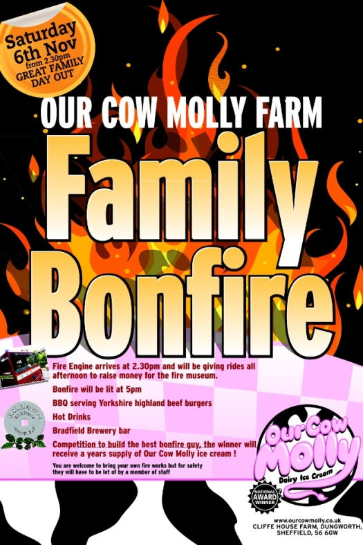 Our Cow Molly family bonfire
