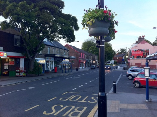 Hanging baskets in Crosspool precinct