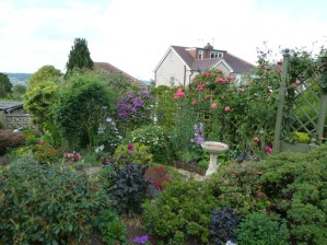 Crosspool Open Gardens 2011