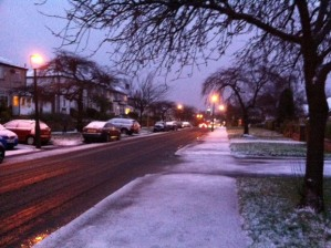 Snow on Watt Lane this morning