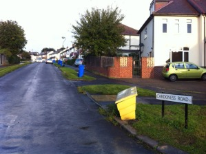 Blue bins and boxes weren't emptied on some Crosspool roads on Monday