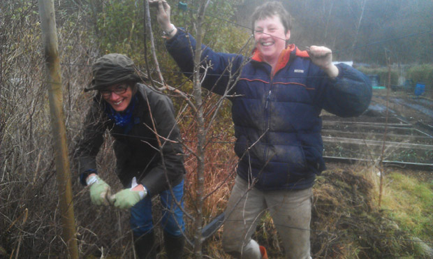 Hillside Harvest open day volunteers