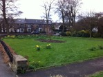 Lydgate Green planting and tidy-up day, Saturday 27 April 2013