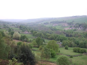 Carver fields