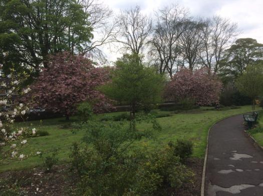 Lydgate Green