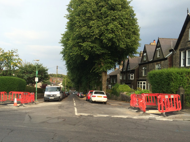 Cairns Road: trees will be removed for the delayed resurfacing project