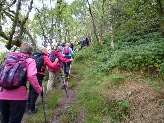 Hallam Community Association Boundary walkers