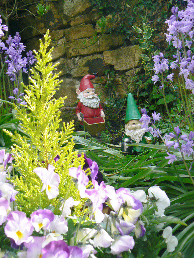 Photo 2 - garden with gnomes. Vote for this at the bottom of the page