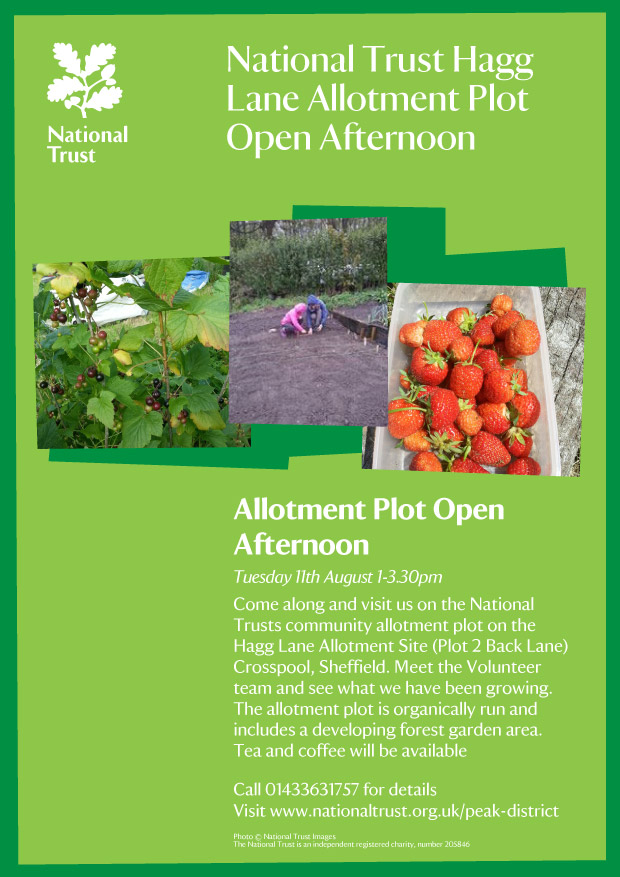 allotment-plot-open-afternoon-2015
