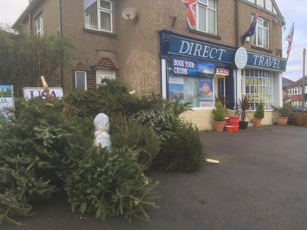 Thanks to everyone who brought their Christmas trees for recycling