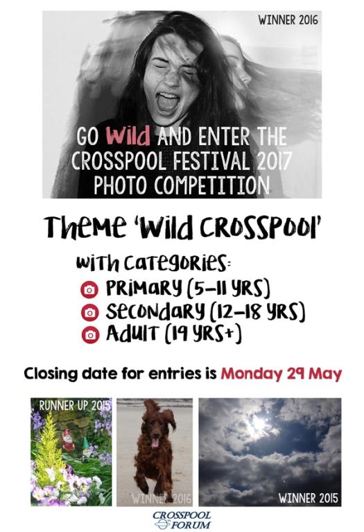 2017 Crosspool Festival photo competition