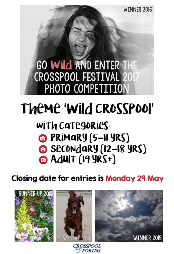 2017 Crosspool Festival photo competition