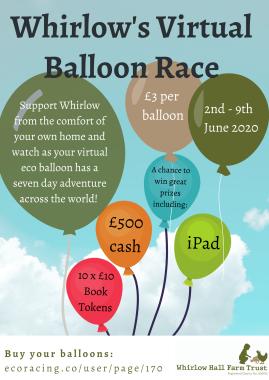 VirtualBalloonraceposter